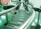 Low Power Consumption Chain Conveyor Systems With Stainless Steel Frame Material